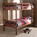 Baxton Studio Liam Modern and Contemporary Walnut Brown Finished Wood Twin Size Bunk Bed - BSOMG0048-Walnut-Twin Bunk Bed