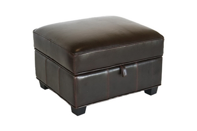Brown Bi Cast Leather Storage Ottoman Affordable Modern